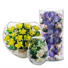 Живые цветы в стекле в вакууме оптом и в розницу с доставкой .