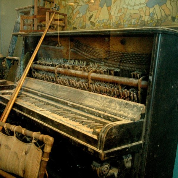 эустомы алые моль в пианино фото решили передать