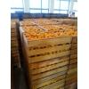 Абхазские мандарины 30 руб/кг. Без посредников
