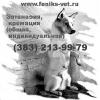 Эвтаназия, Усыпить домашнее животное (собаку, кошку) цена в Новосибирске