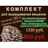 Мицелий вешенки комплект по России почтой семена грибов