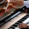 Настройка, ремонт и выбор пианино (фортепиано). Консультации