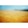 Продам песок отсыпочный, супесь качественную