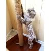 Весь сентябрь действует 20% скидка на стрижку кошек